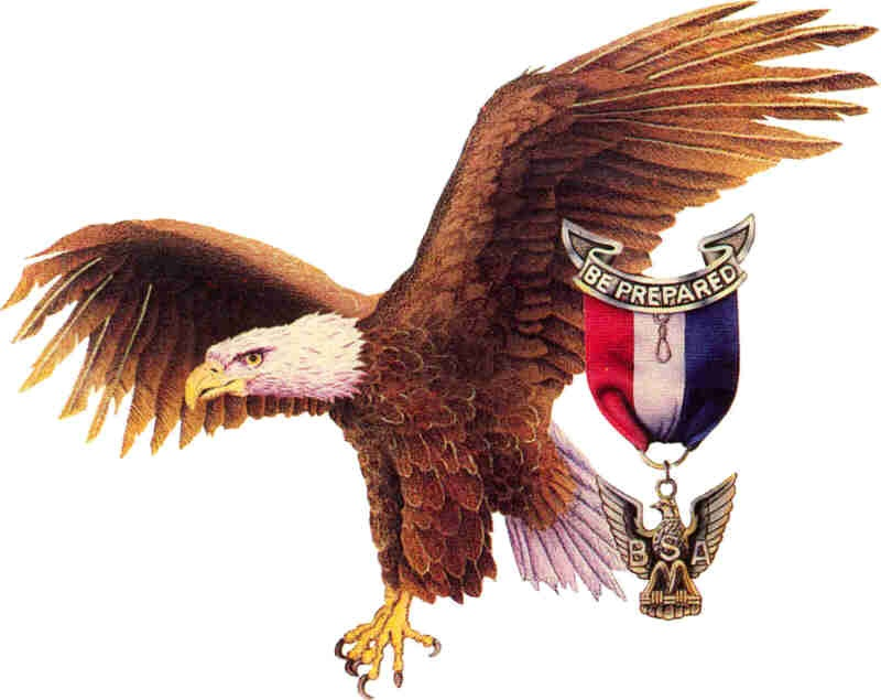 Eagle scout image - photo#4