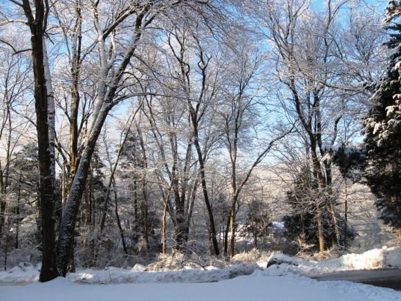 The sun illuminates the snowy scene