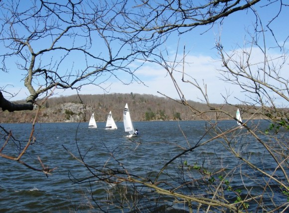 A shoreline view of the high school racing teams on the water