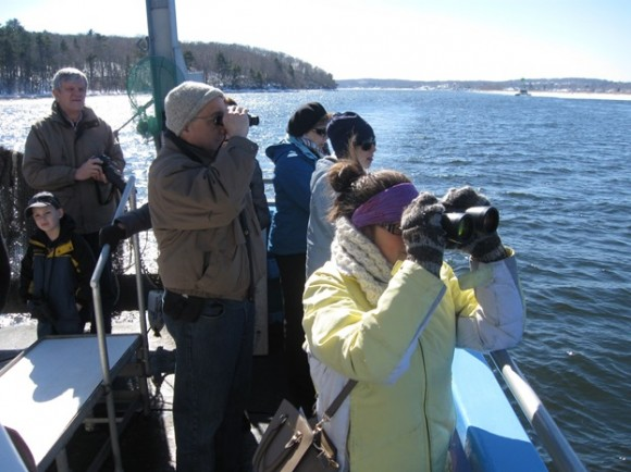 "Viewing the bald eagles from the stern deck of ""Enviro-lab III"""