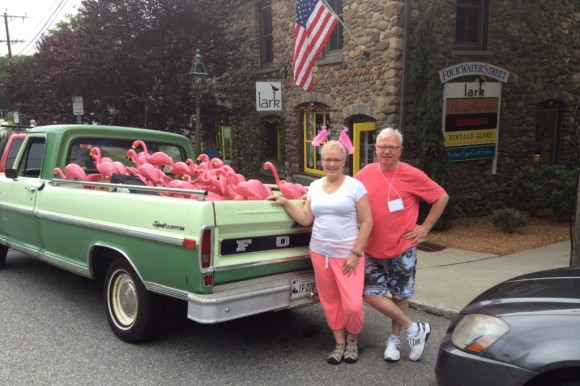 Flamingos arrive in a 1970 Ford pickup truck