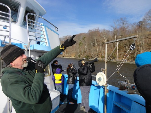 Connecticut River Museum environmental educator, Bill Yule, leads the boat tours and helps participants spot Bald Eagles, wintering hawks and water fowl and other wildlife from the deck of Enviro-Lab III. Photo: Connecticut River Museum.