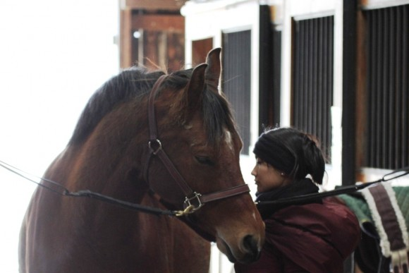 2014-02-01-01_girl_with_horse_compressed