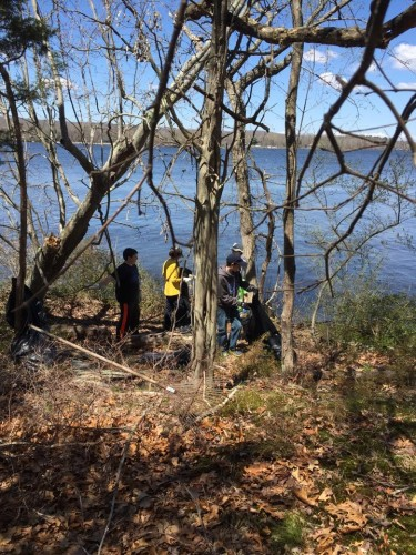 These Boy Scouts are hard at work on Selden Island.