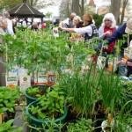 Shoppers enjoy all the attractions of Essex garden Club's May Market.