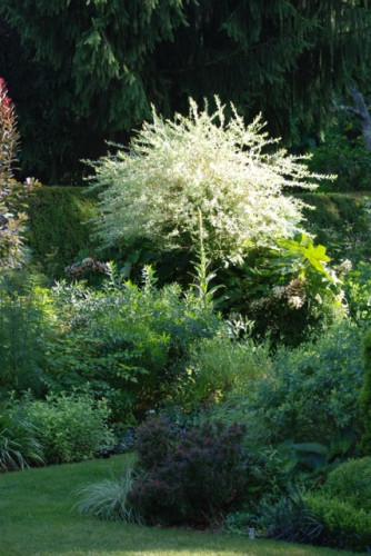 Stony Creek Gardens
