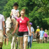 Registration Now Open for High Hopes Summer Equestrian Camp for Ages 3-12