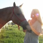 World Renowned Horse Whisperer, Animal Communicator to Visit East Haddam, Sept. 9-11