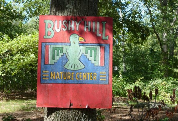 bushy_hill_sign