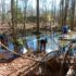 Explore Vernal Pools, Emerging Life in the Preserve, Rescheduled to April 1