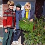 Garden Club Decorates Essex for the Holidays