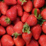 Deep River Historical Society Hosts Strawberry Social Annual Fundraiser, June 3